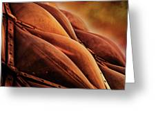 Bloedel Conservatory Aglow Greeting Card