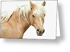 Blonde Stallion Greeting Card