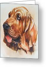 Bloodhound Greeting Card