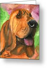 Bloodhound Dog Art Greeting Card