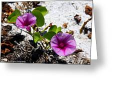 Bloomin Cross Vine Greeting Card