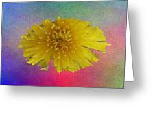 Blooming 3 Greeting Card
