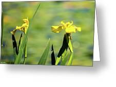 Blooming At Green Lake Greeting Card