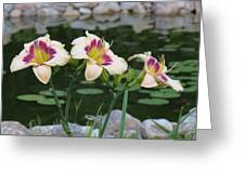 Blooming By The Pond Greeting Card