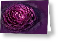 Blooming Cabbage Greeting Card