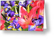 Blooming Colors Greeting Card