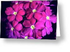 Blooming Crush Greeting Card
