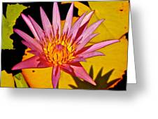 Blooming Lotus Flower Greeting Card