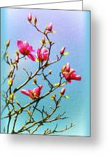 Blooming Magnolia Greeting Card
