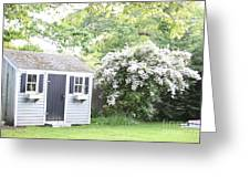 Blooming Tree Next To Shed Greeting Card