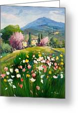 Blooming Tuscany Landscape Greeting Card