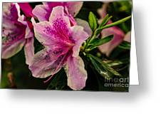 Blooming Wet Greeting Card