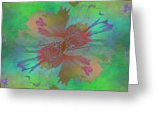 Blooms In The Mist Greeting Card