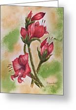 Blooms 'n Red Greeting Card