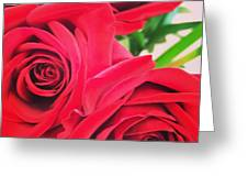 Blooms Of Red Greeting Card