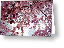 Blossom Artwork Spring Flowers Art Prints Giclee Greeting Card