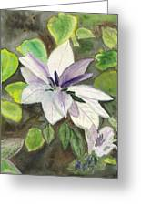 Blossom At Sundy House Greeting Card