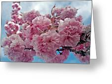 Blossom Bliss Greeting Card