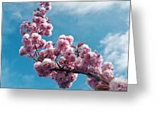Blossom Impressions Greeting Card