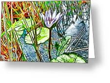Blossom Lotus Flower In Pond Greeting Card