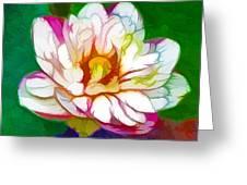 Blossom Lotus Flower Greeting Card