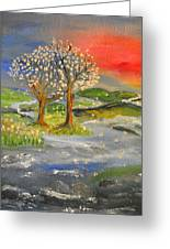 Blossom Trees Greeting Card