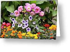Blossoming Flowers Greeting Card