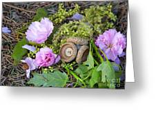 Blossoms And Acorn Greeting Card
