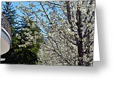 Blossoms And The Bard Greeting Card