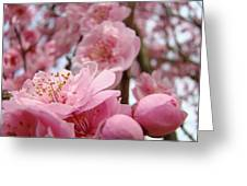 Blossoms Art Print Pink Spring Blossom Baslee Troutman Greeting Card
