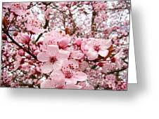 Blossoms Art Spring Pink Tree Blossom Floral Baslee Troutman Greeting Card