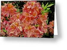 Blossoms In A Summer Shower Greeting Card