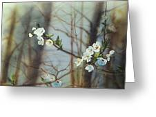 Blossoms In The Wild Greeting Card