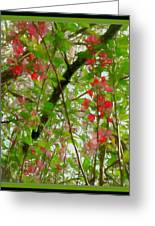 Blossoms Of Spring Time Greeting Card