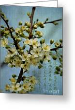 Blossomtime Greeting Card