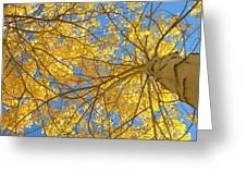 Blue And Gold II Greeting Card