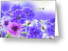 Blue And Violet Cornflowers Greeting Card