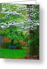 Blue Bench In Park Greeting Card