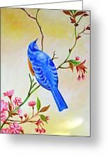 Blue Bird On Cherry Blossom  Greeting Card