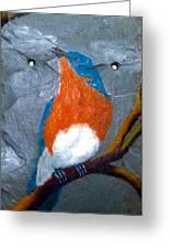 Blue Bird On Slate Greeting Card
