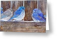 Blue Birds Fly Greeting Card
