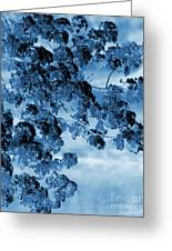 Blue Blossoms Greeting Card