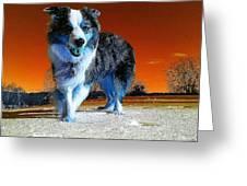 Blue Blue Greeting Card