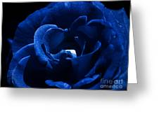 Blue Blue Rose Greeting Card