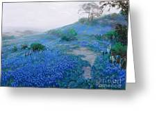 Blue Bonnet Field Early Morning Greeting Card