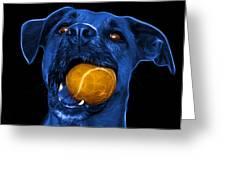 Blue Boxer Mix Dog Art - 8173 - Bb Greeting Card