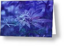 Blue Buds Greeting Card