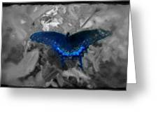 Blue Butterfly In Charcoal And Vibrant Aqua Paint Greeting Card
