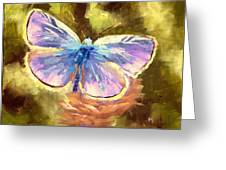 Blue Butterfly Greeting Card