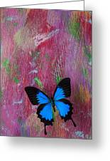 Blue Butterfly On Colorful Wooden Wall Greeting Card